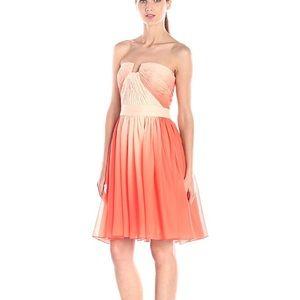 HALSTON HERITAGE Pleated Chiffon Ombré Dress NWT 4